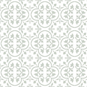 Sea Salt Sherwin Williams Tile Moroccan Cement Tile
