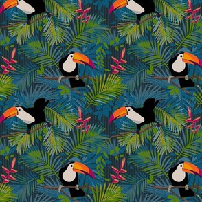 Toucans Colorful Small