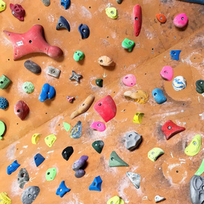 Colorful free climbing bouldering holds wall wood and multi-color FAT QUARTER