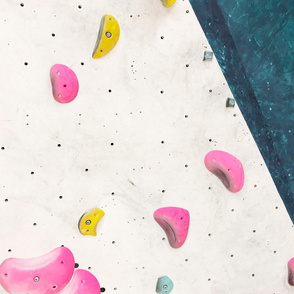 Free climbing bouldering gym holds chalk wall white pink girls FAT QUARTER