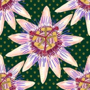 Royal Passionflower N1 (royal green)