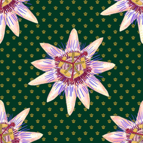 Royal Passionflower N2 (royal green) large