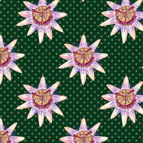 Royal Passionflower N2 (royal green) small