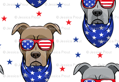 (small scale) patriotic Pit Bull white with stars  (red and blue)