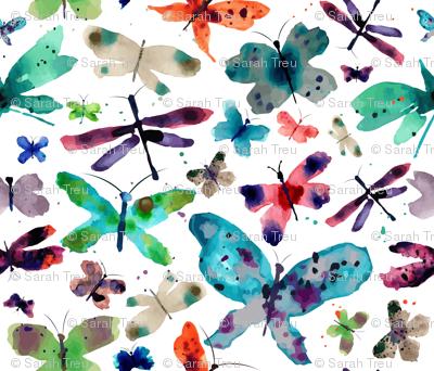 Butterflly Garden