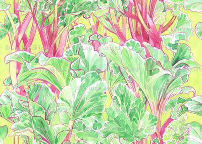 Rhubarbery!