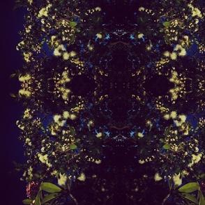 Midnight garden secrets