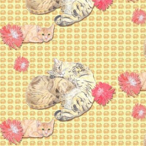 Sleepy Kitty Cats on Soft Yellow