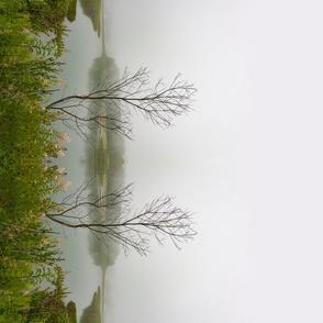 Lonely Tree Border Print