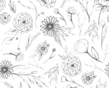 Floralsketch-01_thumb
