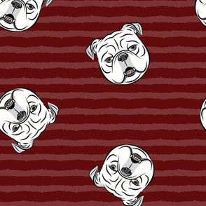 English bulldogs (white) on maroon stripes
