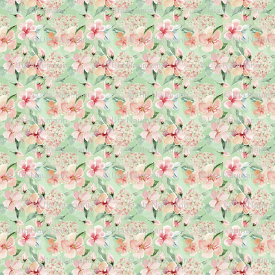 Sweet Watercolor Blush Roses on Green- small