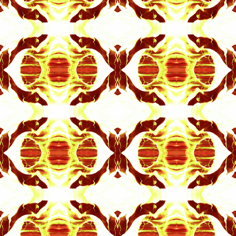 SPC2 -  La Llorona in Orange - White - Brown - Rust, Inner Space fabric by maryyx on Spoonflower - custom fabric