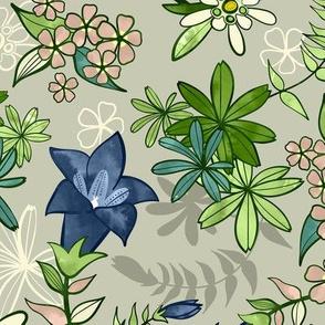 Alpine Flowers - Gentian, Edelweiss