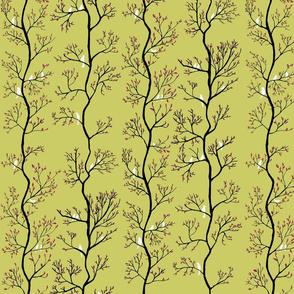 Birds in trees green