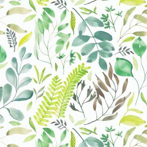 watercolour foliage