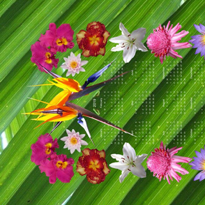 Tropical Flowers 2019