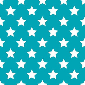 FS Poolside Blue with White  Stars