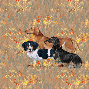 Three Dachshunds in Wildflower Field for Pillow