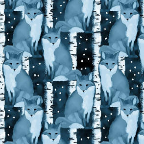 Gray Foxes at Night