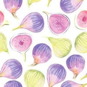 Watercolor Figs