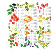 Teatowel 2019 Fruits and Veggies
