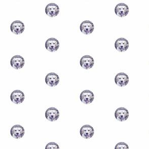 Positively Violet - Dot