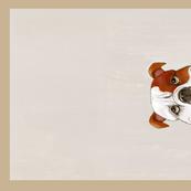 SP towel bulldog