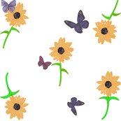 Daisys_with_butterflies_shop_thumb