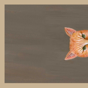 SP towel ginger cat