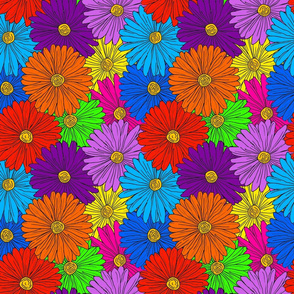 Rainbow Daisies Outline in Black