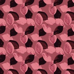 Wild Plum Leaves in Rose