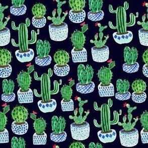 Cactus potplants -navy