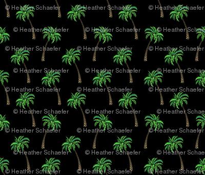 Coconut Palms on Black