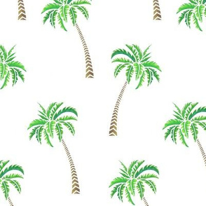Coconut Palms on White