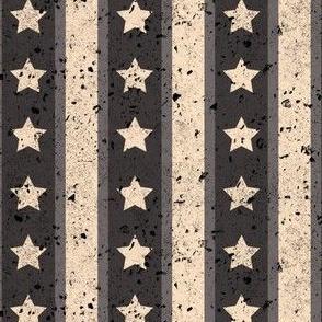 Stars and Stripes Monochromatic Light