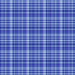 Blueberry Plaid