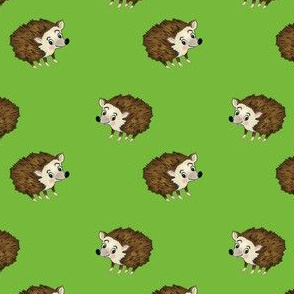 Hedgehog on green