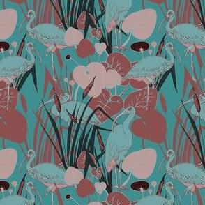 Ibis Egyptian Birds