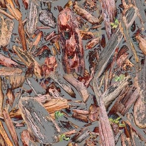 Driftwood in mud -red