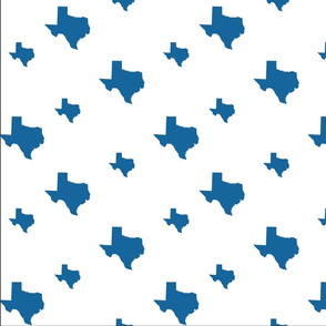 State of Texas Pattern
