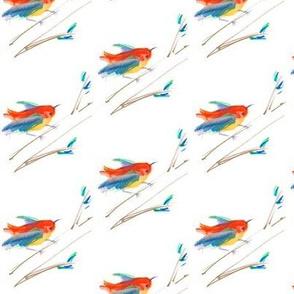 Little Colorful Birds