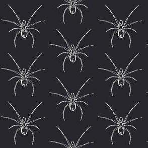 Spider, Halloween