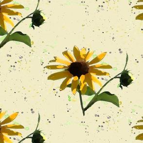 Black Eyed Susan_sunflowers