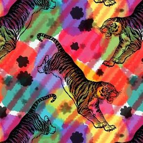 Painted Tigers - Multi