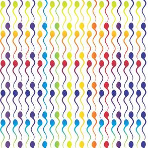 Rainbow Swimmers