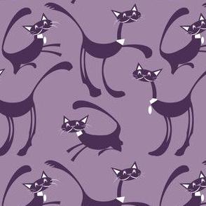 Grape purple cats