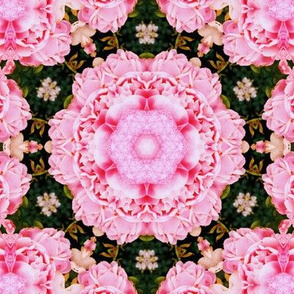 Flower Kaleidoscope 4