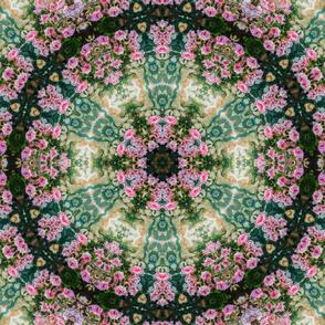 Flower Kaleidoscope 3