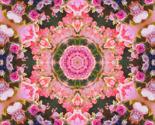 Rimage3a3303_mirror9_thumb
